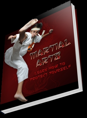 Product picture Martial Arts with Free Wordpress Theme